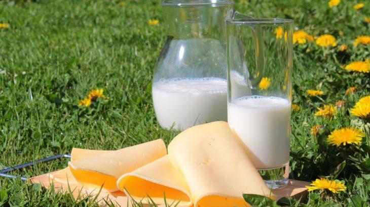 【チーズ】種類一覧や栄養について検証、実は美容にも効果アリ!?