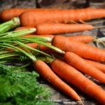 人参の栄養や健康への効果・腐るとどうなるのか?保存方法などを解説!
