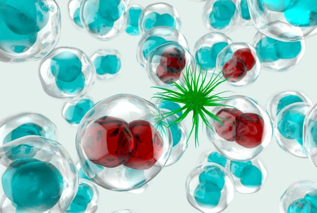 ウイルス細胞